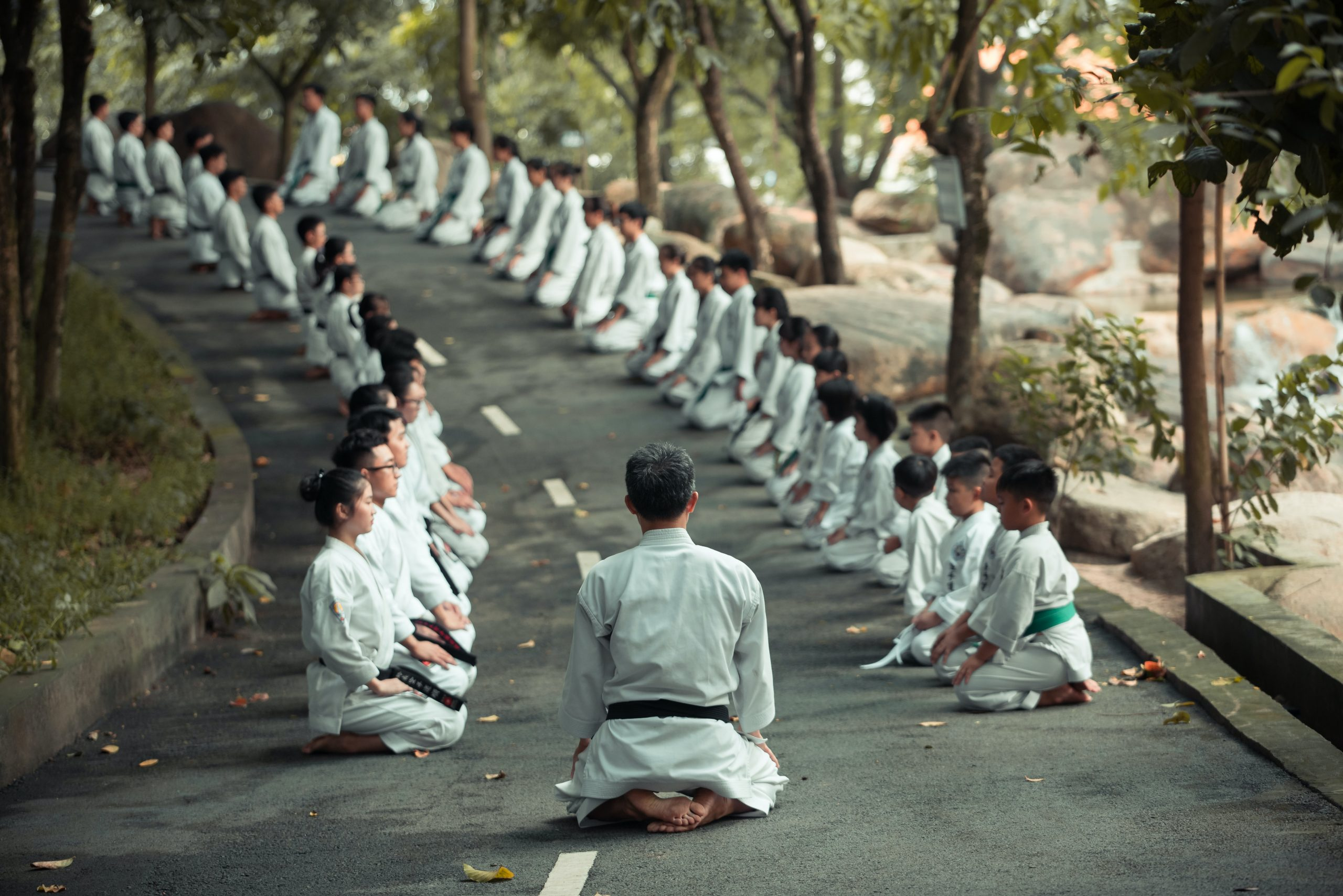 What is the Martial Arts Belt System?